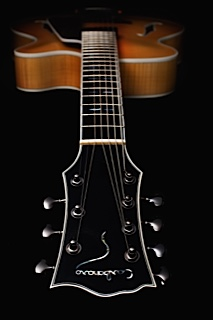 Carbonaro_Guitars004